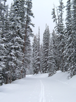 Cross-country skiing is one of winter's greatest outdoor pleasures on Old Monarch Pass. 4 miles from Ski Town Condos.
